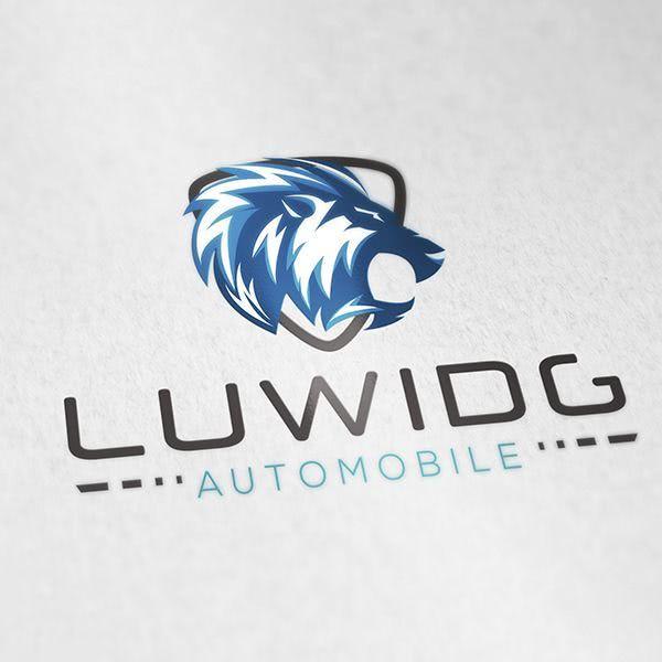 LUDWIDG - Automobile